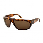 FIREBIRD-TORTOISE(BRONZE POLARIZED
