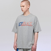 STARS AND STRIPES T (M/GRAY)