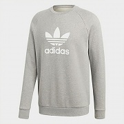 (CY4573) TREFOIL WARM-UP CREW SWEATSHIRT-GREY
